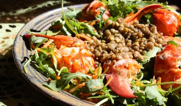 lobster_lentil_argula_salad_by_chef_michael_smith